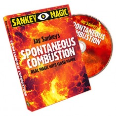 Spontaneous Combustion by Jay Sankey