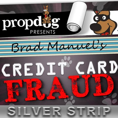 Credit Card Fraud by Brad Manuel and PropDog - International Style Silver Strip