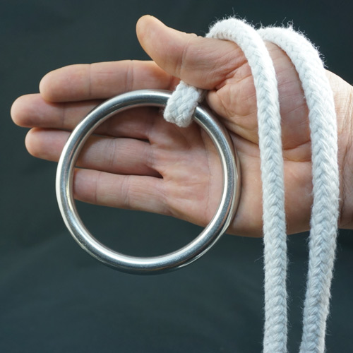 Stainless Steel Ring for Ring on Rope - 100mm x 10mm by PropDog