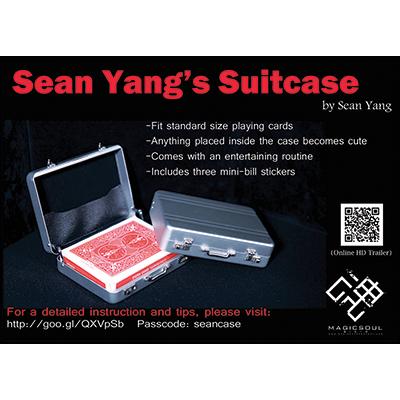 Suitcase by Sean Yang