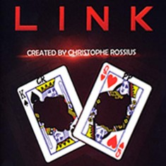 Link - The Linking Card Project by Christoph Rossius
