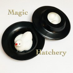 Magic Hatchery