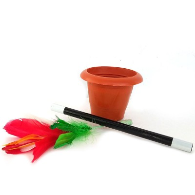 Flowers from Wand in Pot