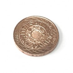Copper Plated £2 Coin by PropDog