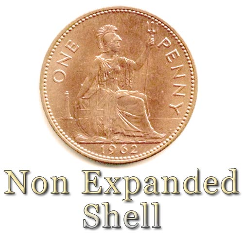 Non Expanded Shell - Old English Penny