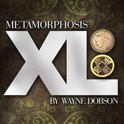 Metamorphasis XL by Wayne Dobson