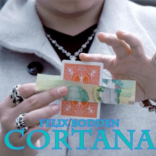 Cortana by Felix Bodden