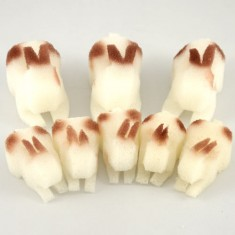 3D Rabbit Set by Goshman